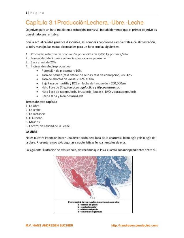 1403565991 captulo3.1 produccinlechera.-ubre-leche unidad 1