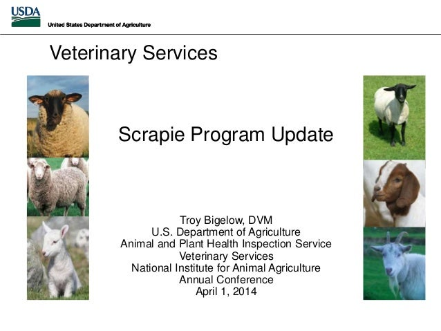 Scrapie Program Update Troy Bigelow, DVM U.S. Department of Agriculture Animal and Plant Health Inspection Service Veterin...