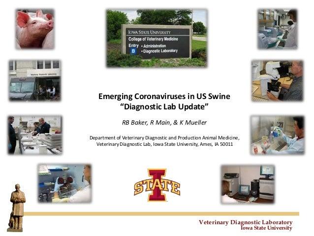 "Veterinary Diagnostic Laboratory Iowa State University Emerging Coronaviruses in US Swine ""Diagnostic Lab Update"" RB Baker..."