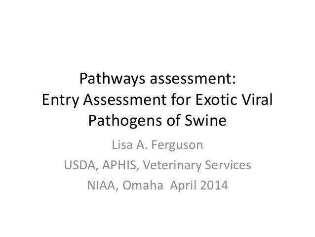 Pathways assessment: Entry Assessment for Exotic Viral Pathogens of Swine Lisa A. Ferguson USDA, APHIS, Veterinary Service...
