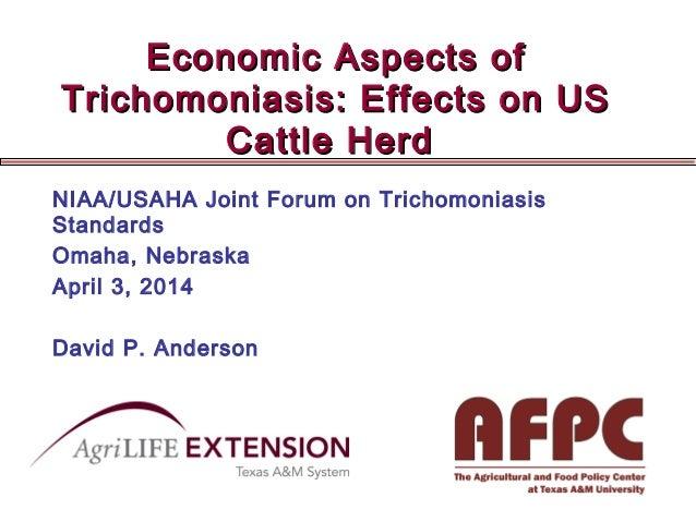 Economic Aspects ofEconomic Aspects of Trichomoniasis: Effects on USTrichomoniasis: Effects on US Cattle HerdCattle Herd N...