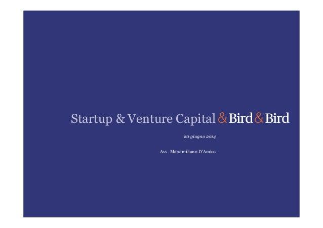 Startup & Venture Capital 20 giugno 2014 Avv. Massimiliano D'Amico