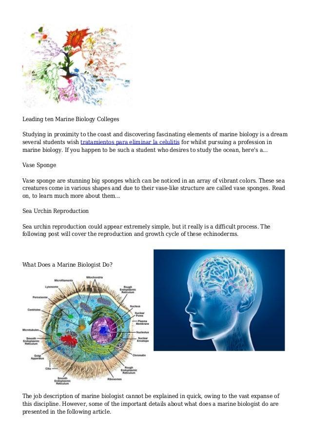 Marine Biology | Buzzle.Com
