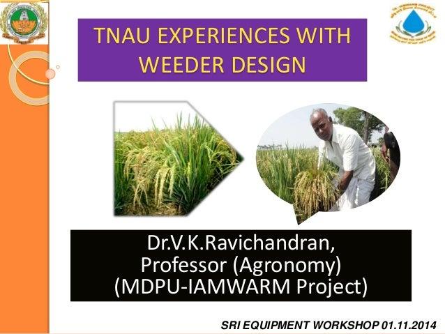 TNAU EXPERIENCES WITH WEEDER DESIGN Dr.V.K.Ravichandran, Professor (Agronomy) (MDPU-IAMWARM Project) SRI EQUIPMENT WORKSHO...