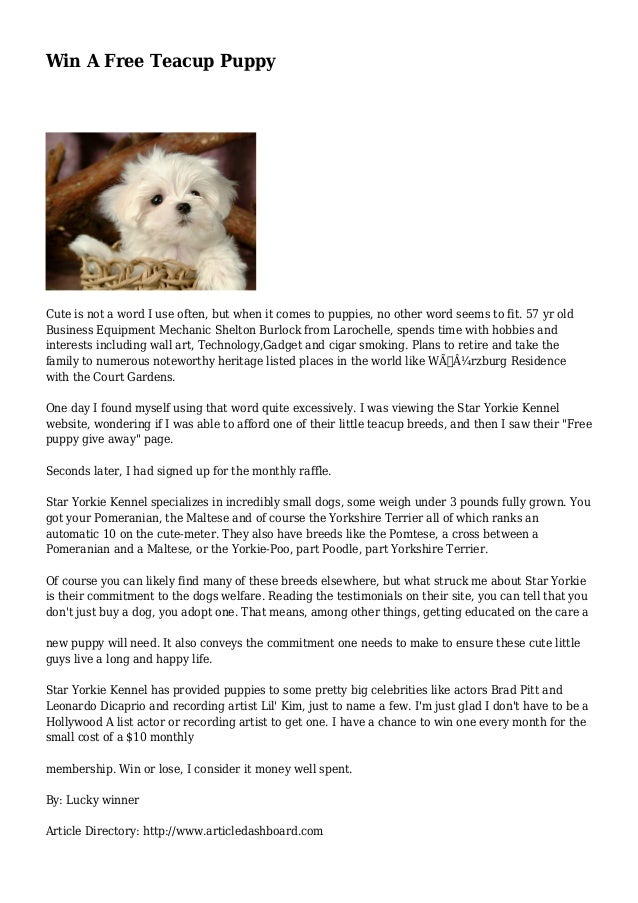 Win A Free Teacup Puppy