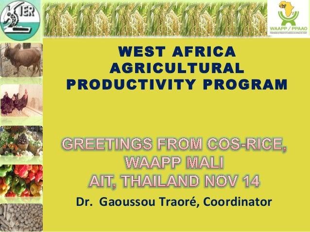 WEST AFRICA  AGRICULTURAL  PRODUCTIVITY PROGRAM  Dr. Gaoussou Traoré, Coordinator