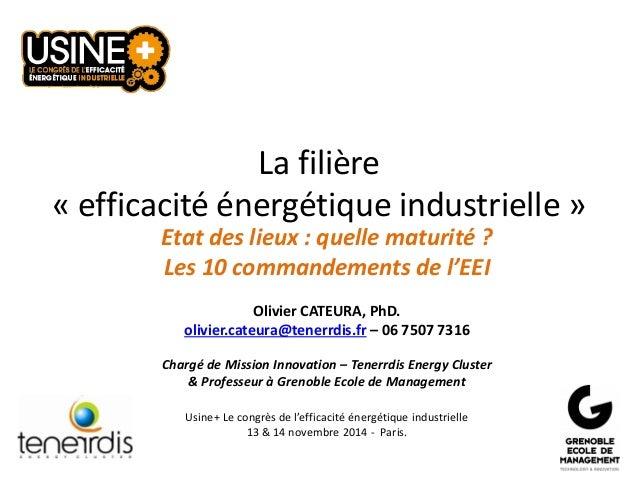 La filière «efficacité énergétique industrielle»  Etat des lieux : quelle maturité ?  Les 10 commandements de l'EEI  Olivi...