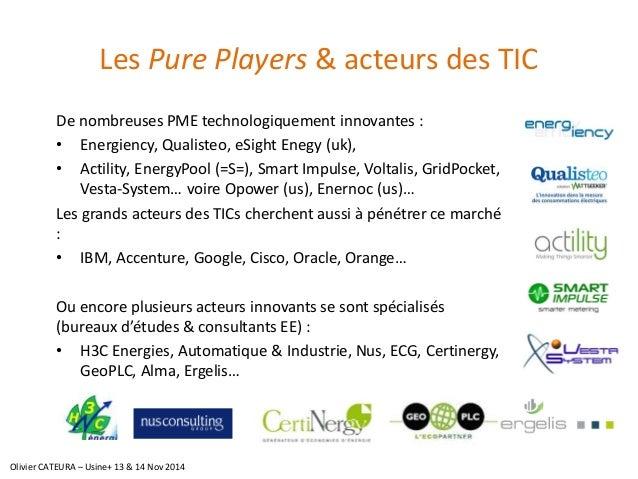 Les Pure Players& acteurs des TIC  De nombreuses PME technologiquement innovantes :  •Energiency, Qualisteo, eSightEnegy(u...
