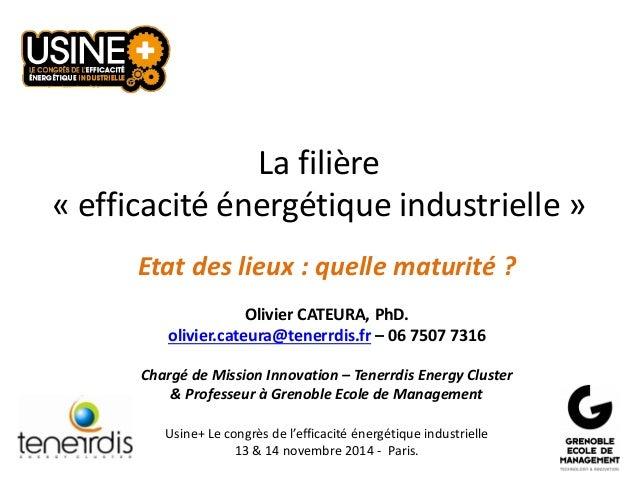 La filière «efficacité énergétique industrielle»  Etat des lieux : quelle maturité ?  Olivier CATEURA, PhD.  olivier.cateu...