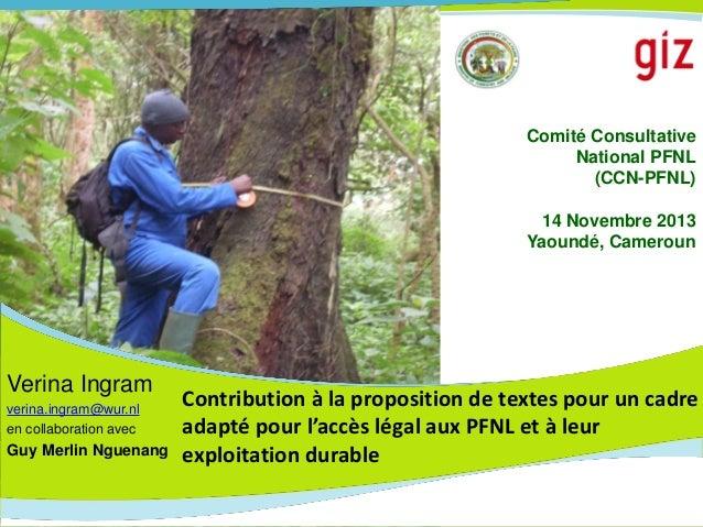 Comité Consultative National PFNL (CCN-PFNL)  14 Novembre 2013 Yaoundé, Cameroun  Verina Ingram verina.ingram@wur.nl en co...