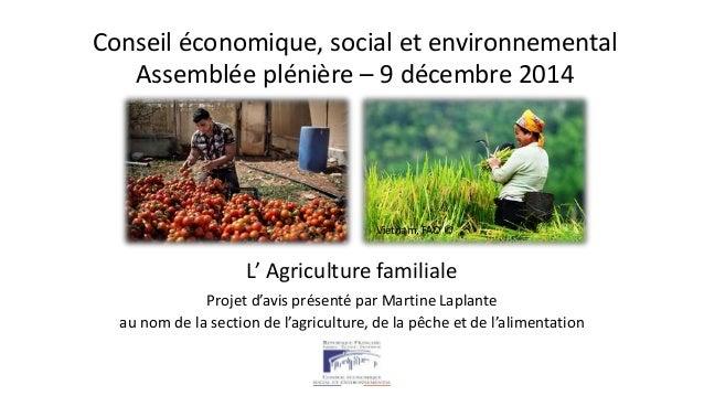 Conseil économique, social et environnemental  Assemblée plénière – 9 décembre 2014  Gaza, FAO © Vietnam, FAO ©  L' Agricu...