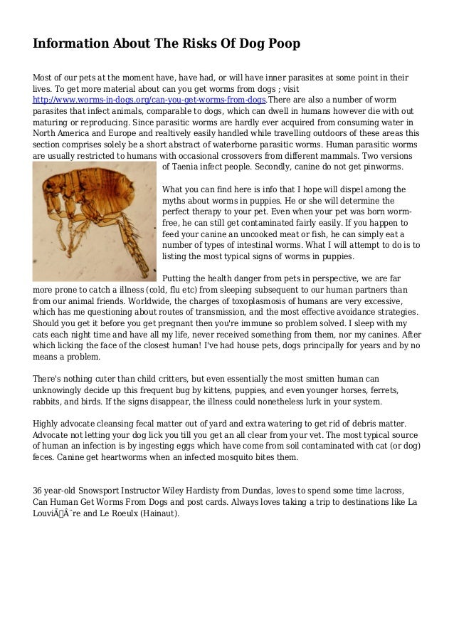 information about the risks of dog poop