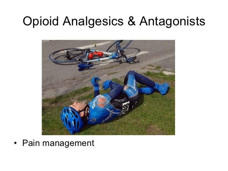 Opioid Analgesics & Antagonists <ul><li>Pain management </li></ul>