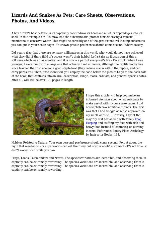 Lizards And Snakes As Pets: Care Sheets, Observations, Photos, And Videos. A box turtle's best defense is its capability t...