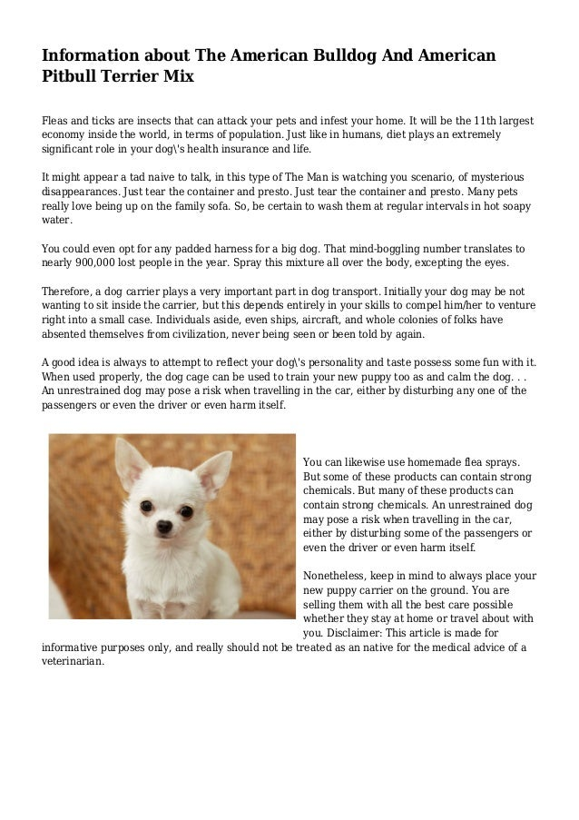 Information about The American Bulldog And American Pitbull Terrier Mix Fleas and ticks are insects that can attack your p...