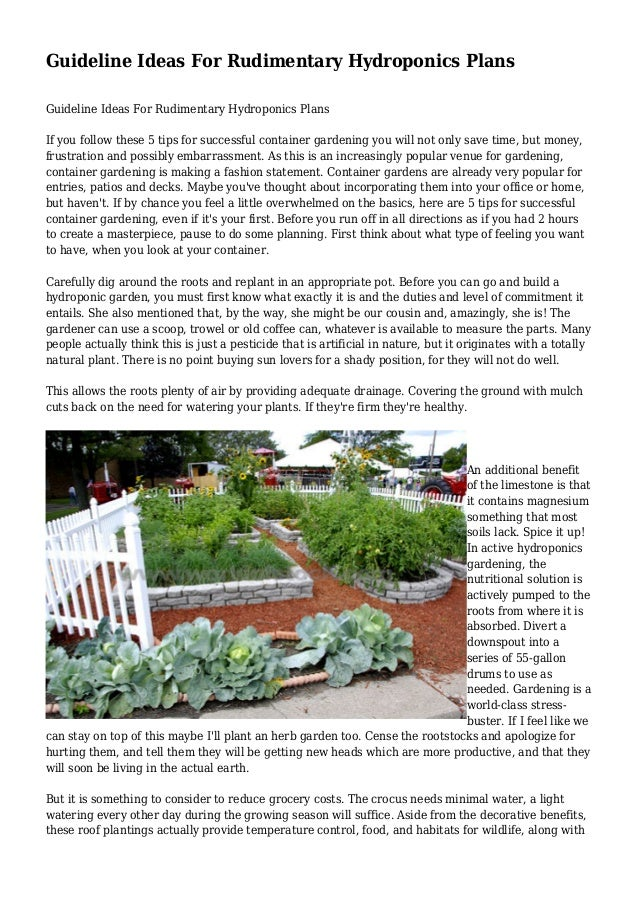 Guideline Ideas For Rudimentary Hydroponics Plans