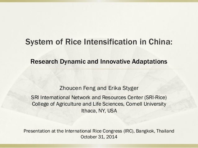 System of Rice Intensification in China: Research Dynamic and Innovative Adaptations Zhoucen Feng and Erika Styger SRI Int...