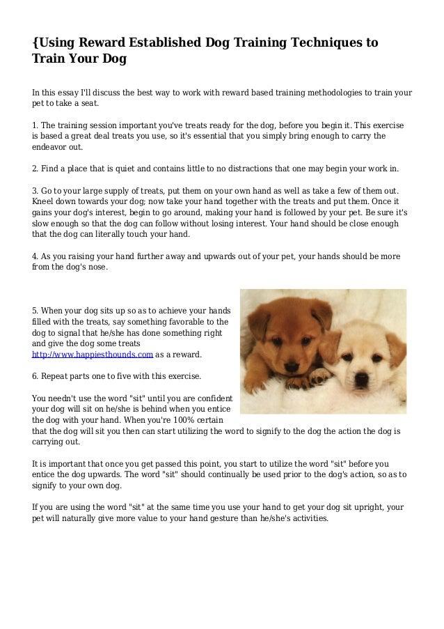 Essay training dog compare democrats and republicans essay