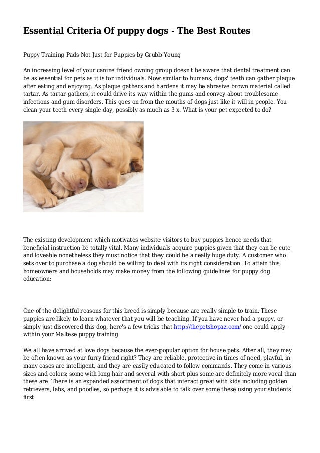 Essential Criteria Of puppy dogs - The Best Routes Puppy Training Pads Not Just for Puppies by Grubb Young An increasing l...