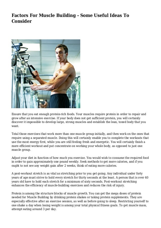 Factors For Muscle Building Some Useful Ideas To Consider