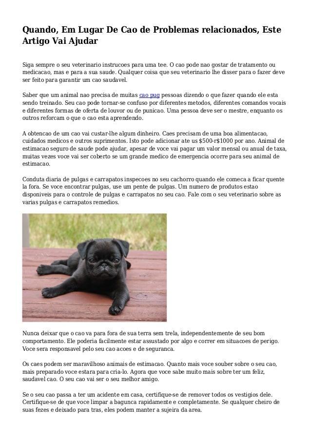 Quando, Em Lugar De Cao de Problemas relacionados, Este Artigo Vai Ajudar Siga sempre o seu veterinario instrucoes para um...