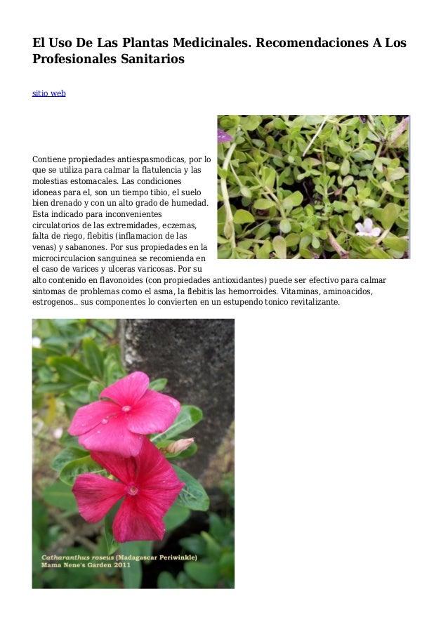 El Uso De Las Plantas Medicinales. Recomendaciones A Los Profesionales Sanitarios sitio web Contiene propiedades antiespas...