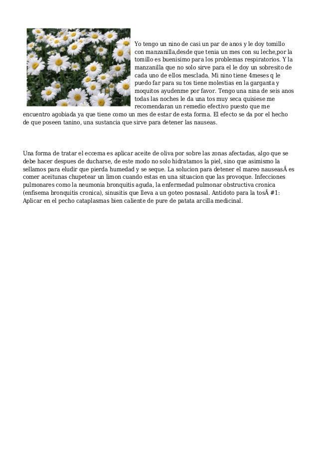 Diez remedios caseros contra la gripe - Remedios contra la humedad ...