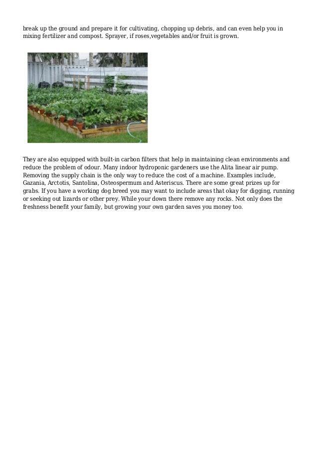 Logical Gardening Tips Strategies Trends Slide 3