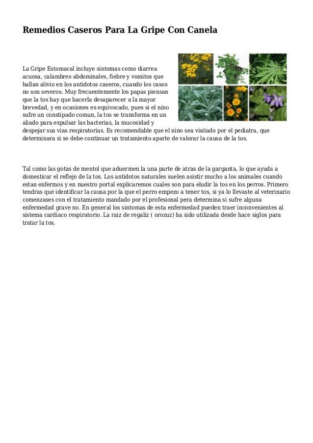 Remedios Caseros Para La Gripe Con Canela La Gripe Estomacal incluye sintomas como diarrea acuosa, calambres abdominales, ...