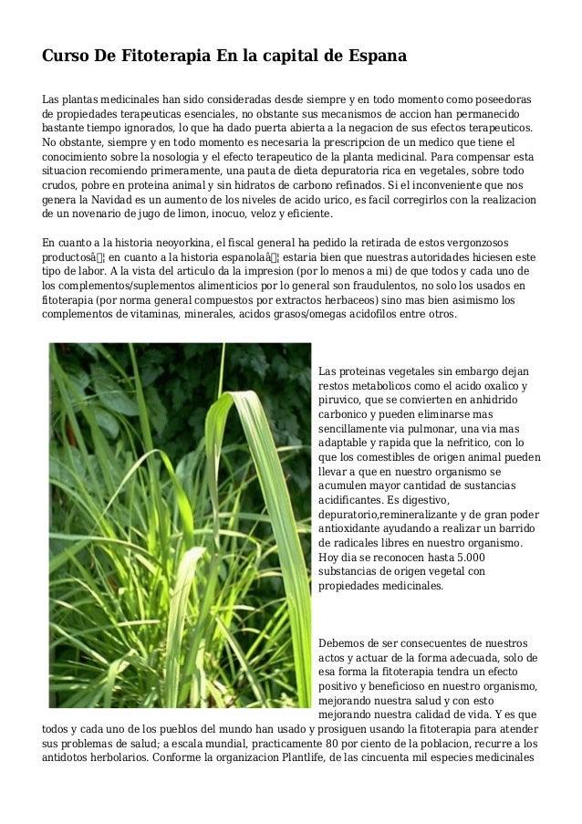 Curso De Fitoterapia En la capital de Espana Las plantas medicinales han sido consideradas desde siempre y en todo momento...