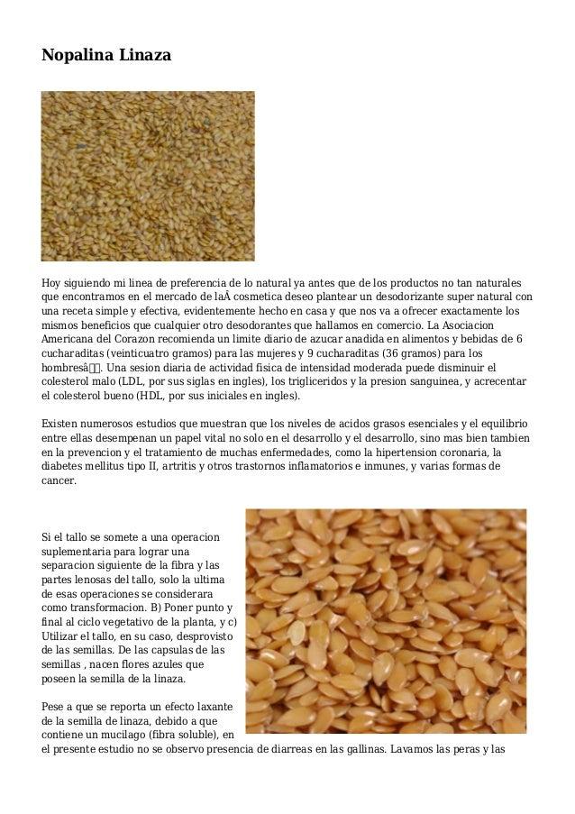 Nopalina Linaza Hoy siguiendo mi linea de preferencia de lo natural ya antes que de los productos no tan naturales que enc...