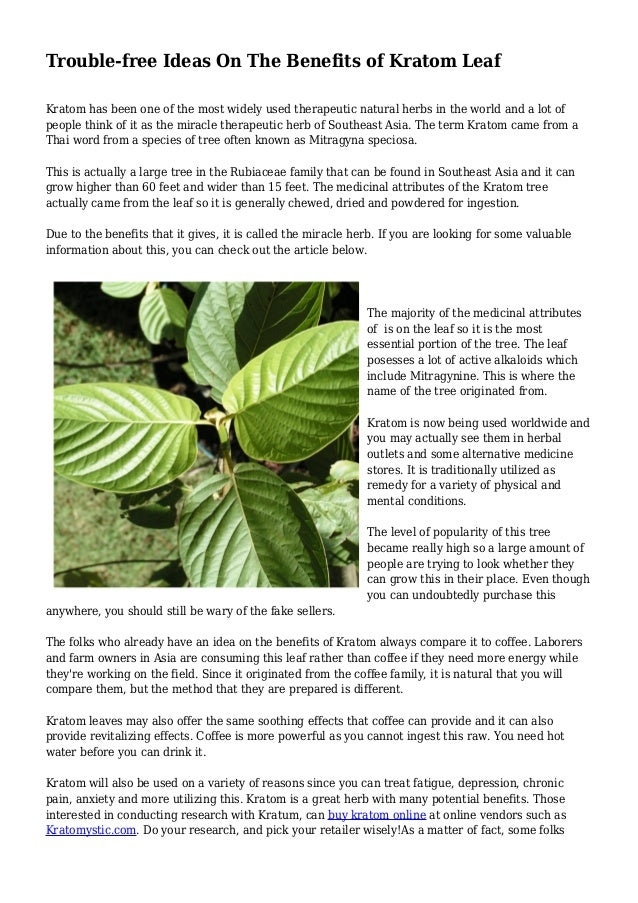 Trouble-free Ideas On The Benefits of Kratom Leaf Kratom has been one of the most widely used therapeutic natural herbs in...