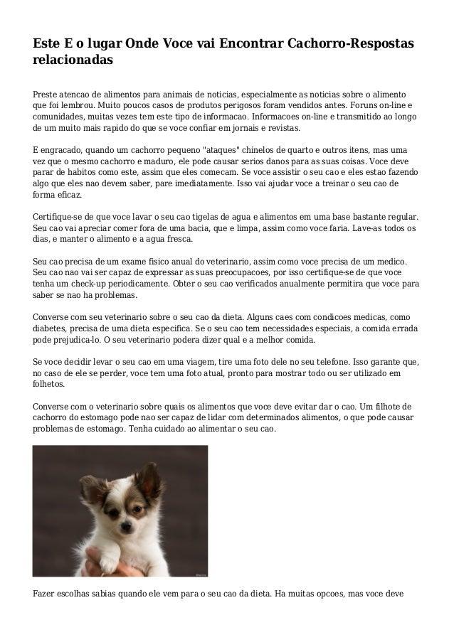 Este E o lugar Onde Voce vai Encontrar Cachorro-Respostas relacionadas Preste atencao de alimentos para animais de noticia...
