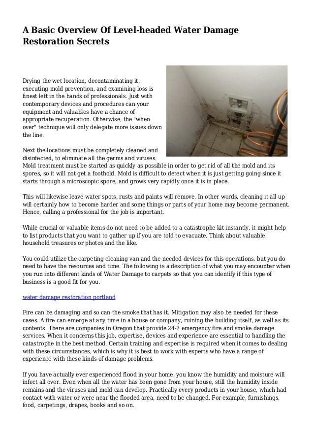 a basic overview of level headed water damage restoration secrets rh slideshare net