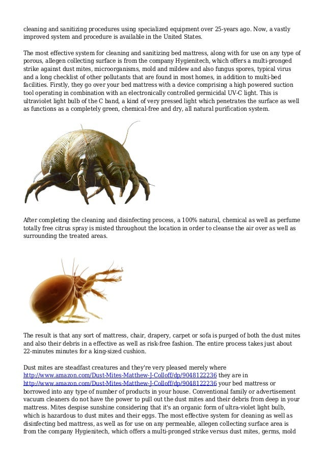 How To Get Rid Of Dust Mites The Secret Adversary You