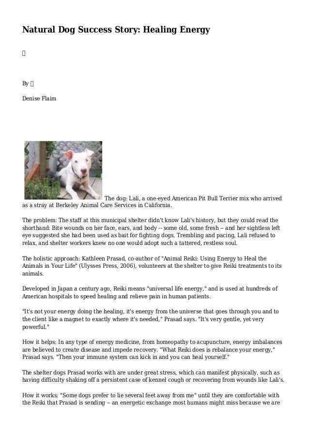 Natural Dog Success Story: Healing Energy  By  Denise Flaim The dog: Lali, a one-eyed American Pit Bull Terrier mix who ar...
