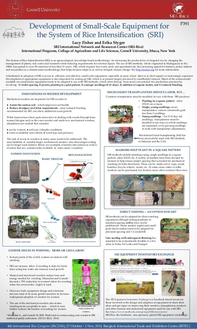 Development of Small-Scale Equipment for  the System of Rice Intensification (SRI)  Lucy Fisher and Erika Styger  SRI Inte...
