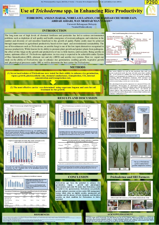 INTRODUCTION  Trichoderma spp. have the potential to enhance rice germination, vigour, growth and physiological characteri...