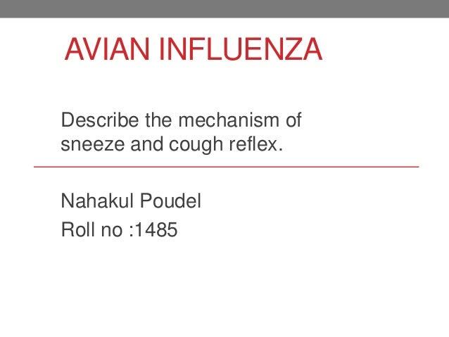 AVIAN INFLUENZA Describe the mechanism of sneeze and cough reflex. Nahakul Poudel Roll no :1485