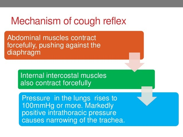Mechanism Of Cough And Sneeze Reflex