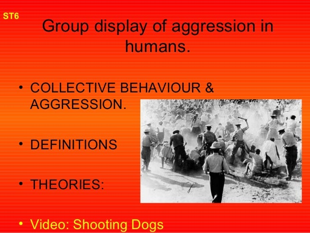 group display of aggression in humans Group displays of aggression sports events 2 or more teams and their spectators aggression may be in group display – eg chanting, taunting, throwing little serious violence but heavy police presence football clubs have 'firms' (highly organised and discrete).