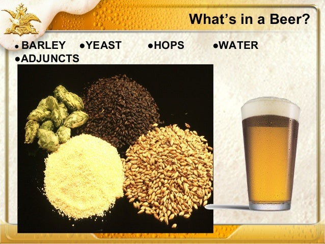 process of beermaking