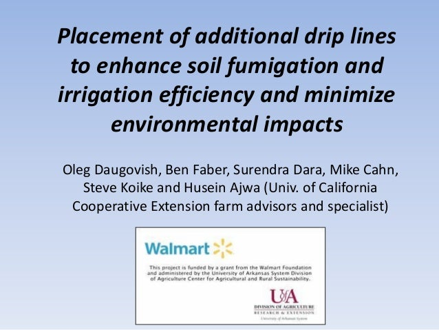 Placement of additional drip lines to enhance soil fumigation and irrigation efficiency and minimize environmental impacts...
