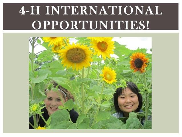 4-H INTERNATIONAL OPPORTUNITIES!