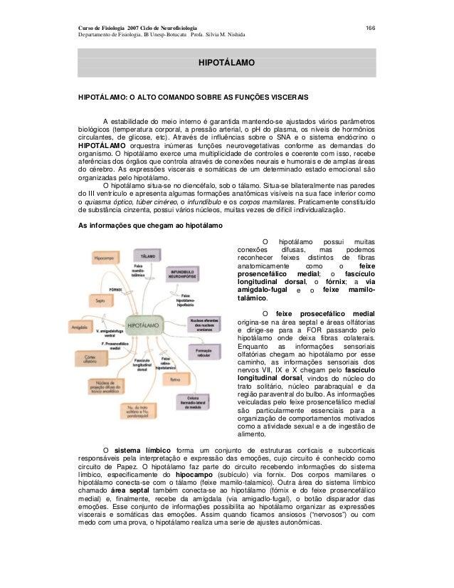 Curso de Fisiologia 2007 Ciclo de Neurofisiologia Departamento de Fisiologia, IB Unesp-Botucatu Profa. Silvia M. Nishida 1...