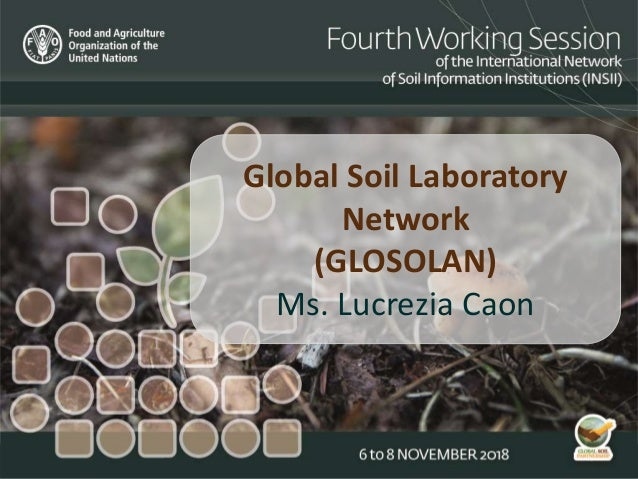 Global Soil Laboratory Network (GLOSOLAN) Ms. Lucrezia Caon