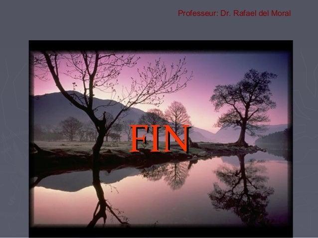 FINFIN Professeur: Dr. Rafael del Moral