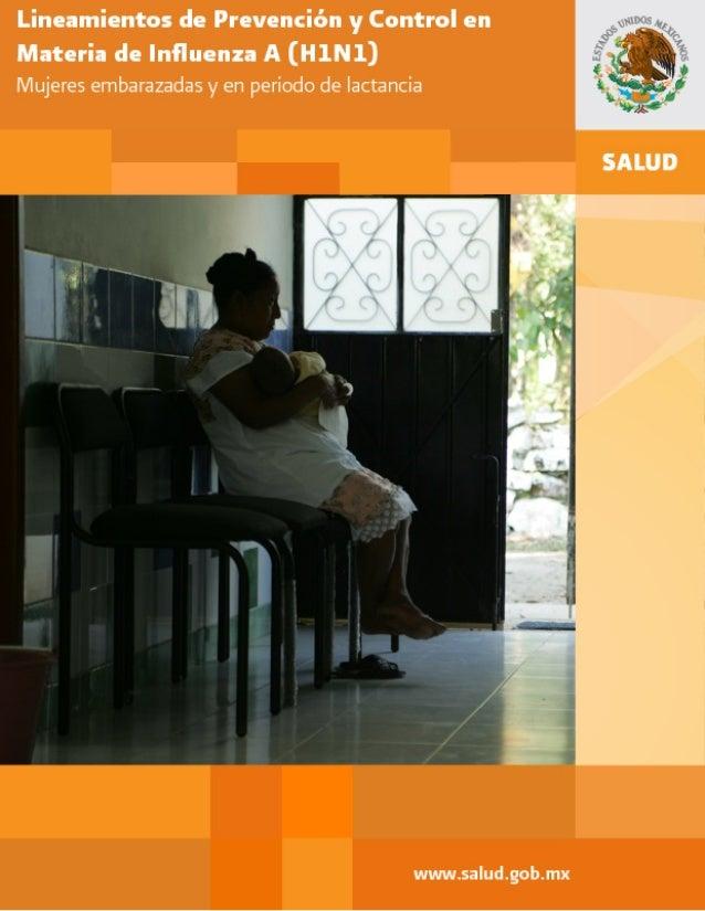 Lineamiento de Prevención y Control en Materia de Influenza A (H1N1): Mujeres embarazadas y en periodo de lactancia Versió...