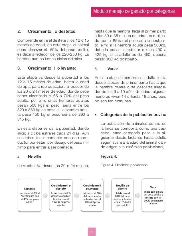 Modulo manejo de ganado por categorias  13  2. Crecimiento I o destetos:  Comprende entre el destete y los 12 o 15  meses ...