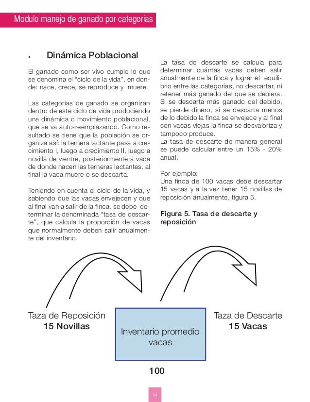 Modulo manejo de ganado por categorias  14  • Dinámica Poblacional  El ganado como ser vivo cumple lo que  se denomina el ...
